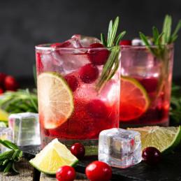 cocktail con succo di mirtillo rosso
