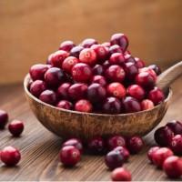 Cranberry séchée du Canada | Canneberges | Les Trésors d'Érable