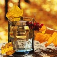 Getränke aus Kanada | Ahornwasser | Saft und Sirup