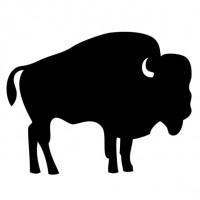 Bizon vlees