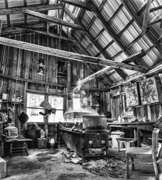 Ancienne cabane à sucre au Canada